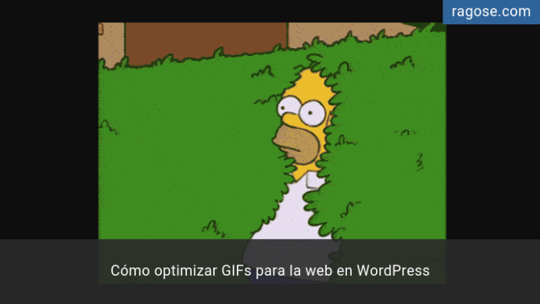 Optimizar GIFs para la web en WordPress