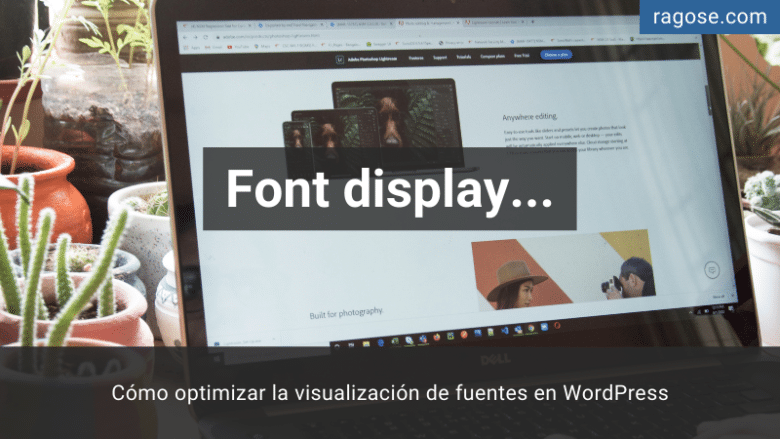Optimizar visualización fuentes WordPress